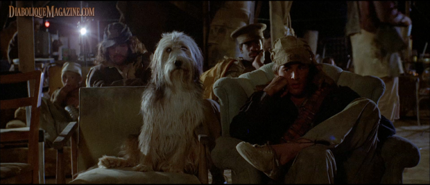 Don Johnson in A Boy and His Dog (1975)