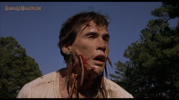 R.A. Dow in Squirm (1976) [Click to enlarge]