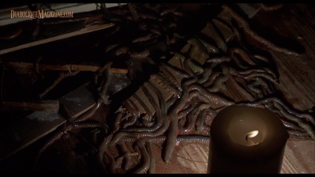 Jeff Lieberman's Squirm (1976) [Click to enlarge]