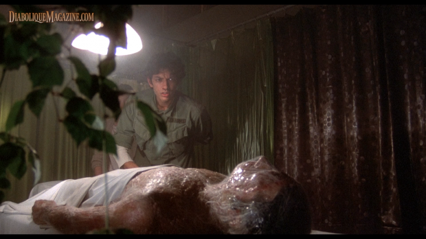 Jeff Goldblum and Veronica Cartwright in Invasion of the Body Snatchers (1978)