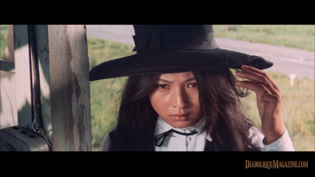 Yasuharu Hasebe's Stray Cat Rock: Sex Hunter (1970) [click to enlarge]