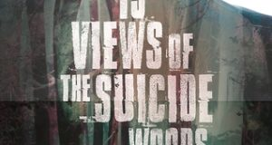 13 views of the suicide