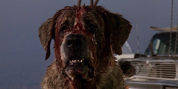 It's not a monster. It's just a doggy: Nope, Nothing Wrong Here: The Making of Cujo (book review)