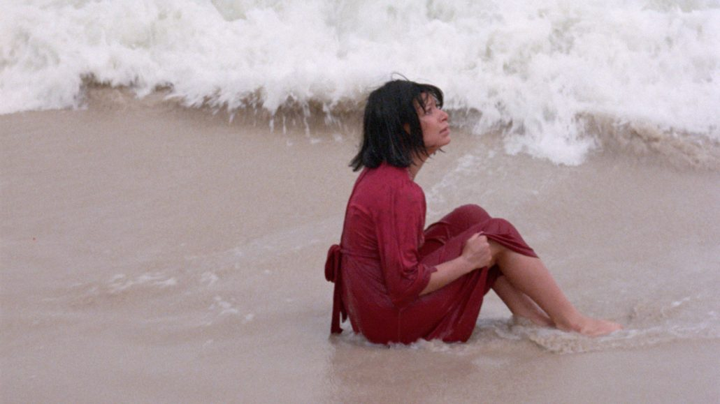 A Woman's Torment: The Films of Roberta Findlay