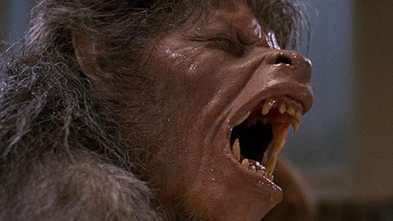 You Saw Me Standing Alone: Lee Gambin and Storyboard Artist John Bruno Discuss 'An American Werewolf in London'