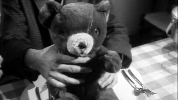 """We're all animals, Dave."" Who Killed Teddy Bear"