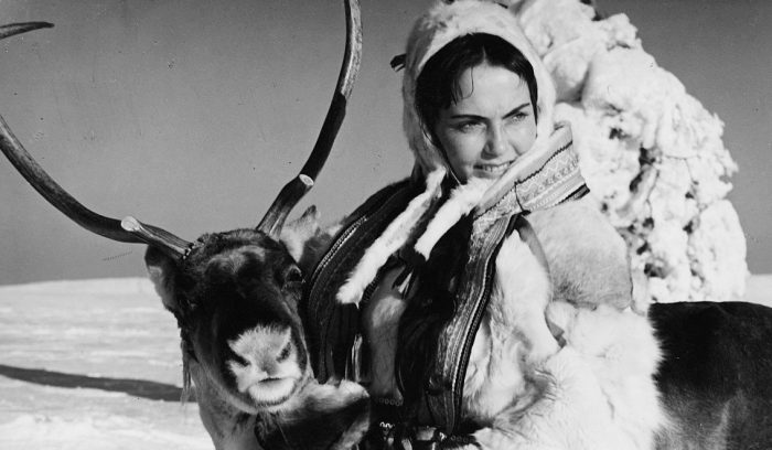 Looking Back at The White Reindeer (1952)