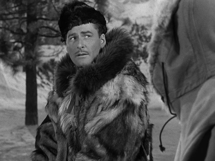 """YOU THINK THIS IS COLD…"" The Politics of the Land in NORTHERN PURSUIT (1943)"