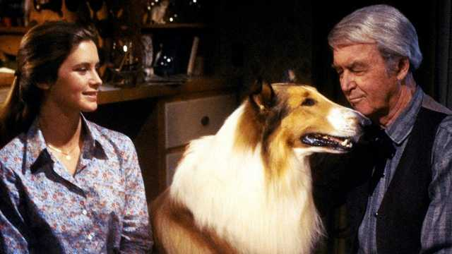 BARKING IN TUNE The Sherman Brothers Sing-a-Long with Lassie: The Magic of Lassie (1978)