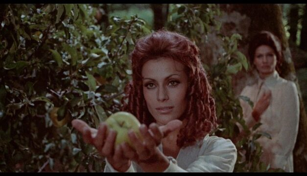 """YOUTH, BEAUTY… FOREVER!"" A LOOK AT MONDO MACabro's blu-ray of queens of evil"
